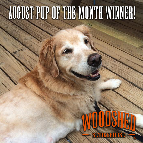 moses-pup-of-the-month-woodshed-smokehouse
