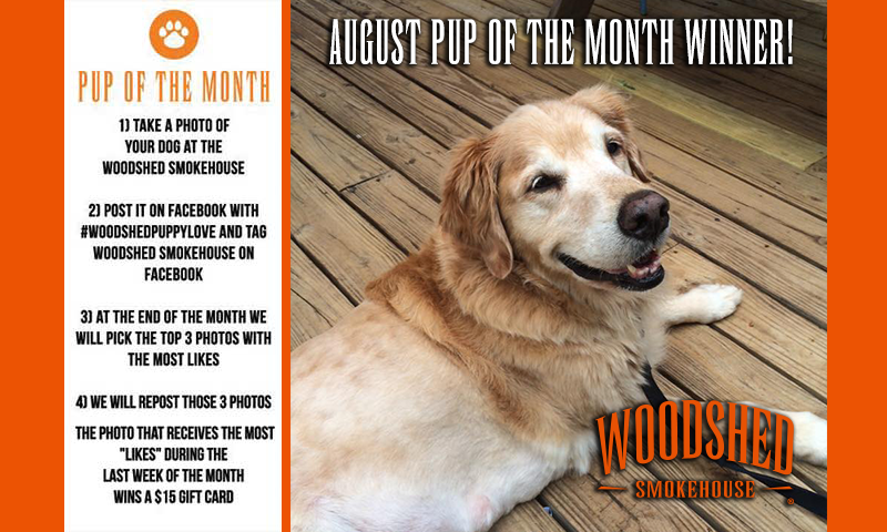 pup-of-the-month-aug